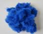 棉型深蓝色短纤